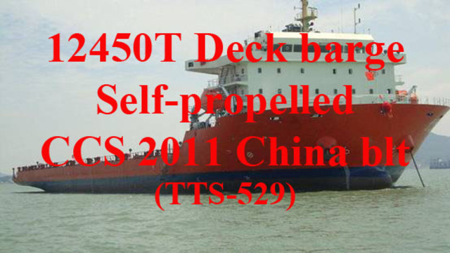 2011 12450 DWT Self-propelled deck barge (TTS-529) for sale by Wide